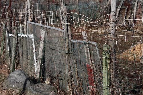 garden fence 025