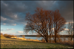 The tree and the river... (Marcel Tuit) Tags: sunset sky holland tree water river landscape zonsondergang nederland thenetherlands wolken boom lucht polarizer landschap schemering rivier polarisatie barendrecht ndgrad
