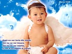 Marcu 12-25 (Palosi Marton) Tags: kids childrens copii crestine versete biblice