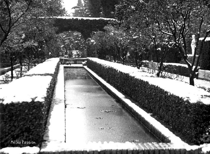 neige et glace dans les jardins d`Andalousie en février 1954