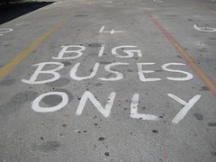 BIG BUSES ONLY (Mcbowerbird) Tags: hell signage scrawl touristattraction grandcayman westbay