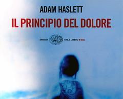 Adam Haslett, Il principio del dolore, Einaudi 2003; progetto grafico di Riccardo Falcinelli; alla cop.: ©Kamil Vojnar/Photonica; cop. (part.)