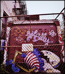 """Where's the frying pan when you need it? (""""alley cat photography') Tags: nyc brooklyn williamsburg gonzojournalism humptydumptysatonadumpster"""