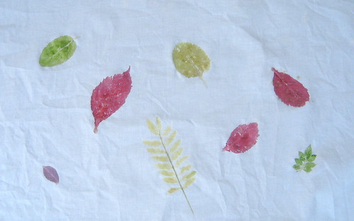 Cherokee Leaf Printing