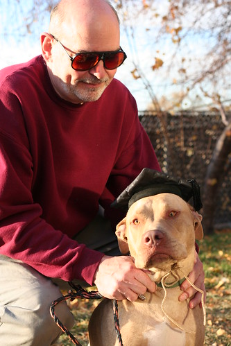 Pit bull from Salt Lake County Animal Services who passed his Canine Good Citizen test with his adopter