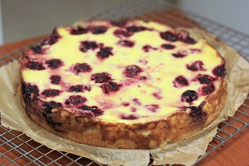 2009.11.12 Blackberry Kuchen