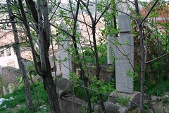 080420036n Kastamonu - (galpay) Tags: friedhof cemetery grave turkey trkiye graves turquie trkei grab blacksea karadeniz turquia kabir turqua turchia mezarta mezar  mezarlk kastamonu    schwarzmeer kabristan   hazire  galpay 080420