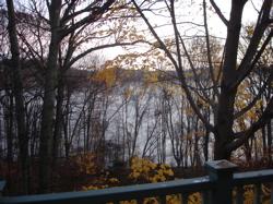 River Fog 1