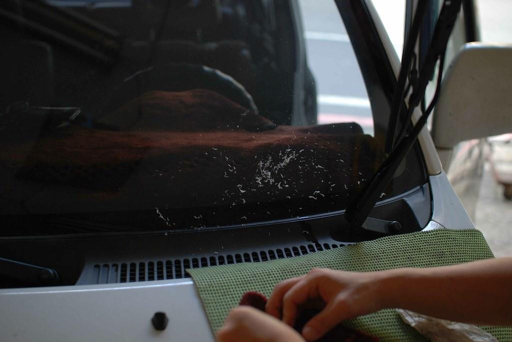 20091120補玻璃-8.jpg