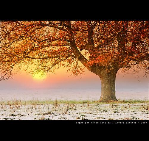 Un amanecer frio de otoño