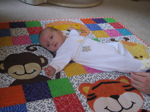 Zoe's Jungle Quilt in action!