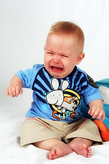 Davi (Fabiana Velôso) Tags: cores ensaio criança menino bichinhos pelúcia fabianavelôso