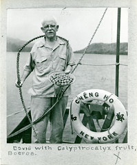 David Fairchild with a Calyptrocalyx specimen