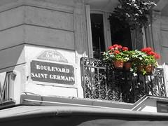 Street Corner, Paris