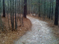 Harbins Hiking Trail 1