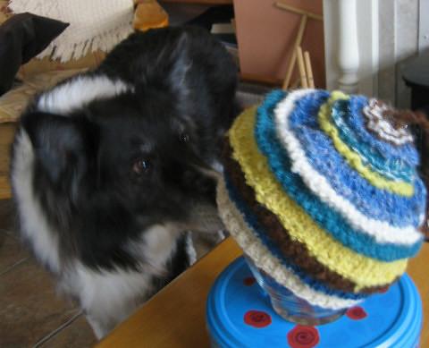 scarp hat10
