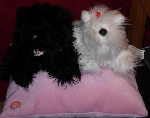 Nanas-dogs