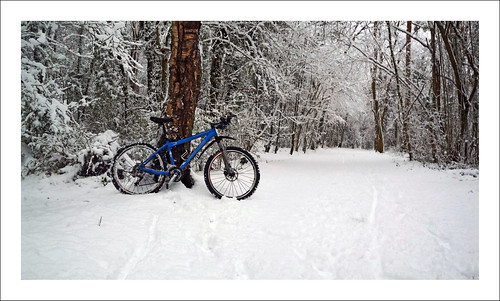 Mountain bike the woods Kenley  Panorama 4_02