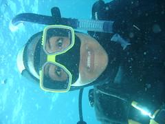 DSC00155 (CAUT) Tags: ocean sea p93 mar underwater sony dive australia cybershot diving pacificocean qld queensland greatbarrierreef sonycybershotdscp93 dsc sonycybershot buceo 2010 divetrip coralsea dscp93 bucear marinepack océanopacífico tropicalqueensland prodivecairns sonycybershotp93 sonympkpeamarinepack granbarrera sonympkpea 3dayouterreefliveaboard mardecoral
