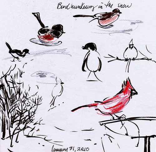 Birds hunkering, birds feeding