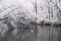 Snow falls (waltersoluh) Tags: trees winter snow nature water landscape pond woods legacy platinumphoto visiongroup theunforgettablepictures dragondaggerphoto redmatrix magicunicornverybest adrinnesmagicalmoments