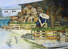 Watercolor - Farmer, George (6catsart) Tags: art nature watercolor painting landscape farm originalpainting watercolour farmer westcoast gardener marketgarden landscapepainting natureart landscapeart farmart figurativeart watercolourpainting originalwatercolor canadianartist pacificwestcoast southburnaby 6catsart corinneaelbers