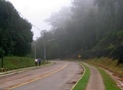 RIMG6157x1000 (Weltbummler) Tags: yerbabuena tucumn bosquenublado nuboselva