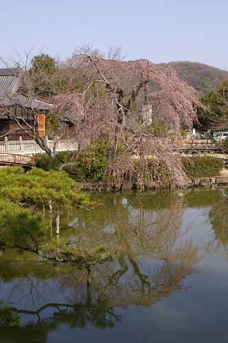 宇賀神社 #1