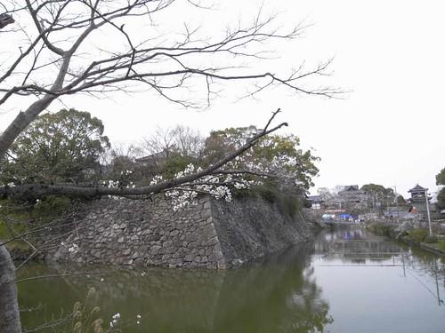 大和郡山お城まつり-05