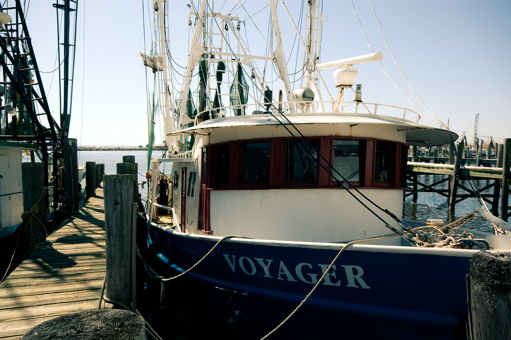 """It's hard to tell the difference between sea and sky, between voyager and sea."""