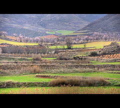 Foothills (Eve Livesey) Tags: pink foothills mountains green river landscape spring vines nikon blossom valley aragon grasses raining drystonewalls scenicroute d80 evelivesey diamondclassphotographer flickrdiamond absolutelystunningscape provinceofzaragoza