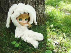 bunny Clementine
