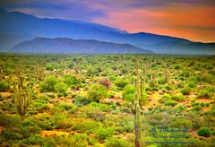 Payson Arizona, Mountains in the Sonoran Desert (PhotosToArtByMike) Tags: arizona landscape desert scenic sonorandesert paysonarizona landscapephotograph enhancedphotograph mountainsinthesonorandesert