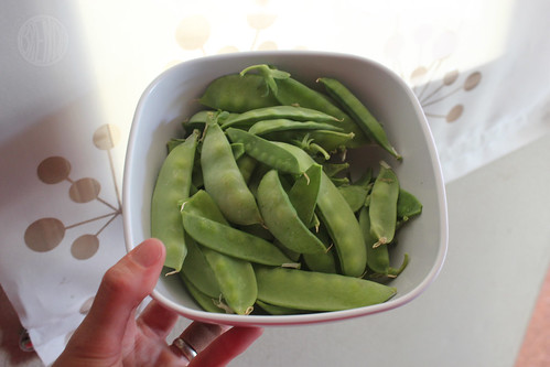 sugar snap peas from my garden!