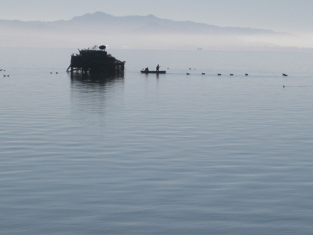 Duck Blind on the Bay