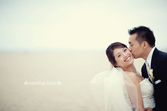 santa-monica-wedding-photography-29 (caroline tran) Tags: sanmarino santamonica beardpapas thecouple weddingphotography carolinetran torrancebakery sheratondelfina commerceflowers