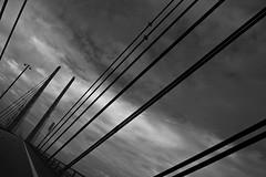 bridge (TheCokeBadger) Tags: summer blackandwhite bw canon copenhagen crossing niklas august asphalt malm 2009 malmo augusti asfalt resundsbron kpenhamn oresundbridge 450d ausenius