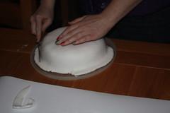Christmas cake icing 15