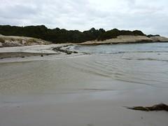 Sur le sentier de Sperone : traversée du ruisseau de Sperone et de sa plage
