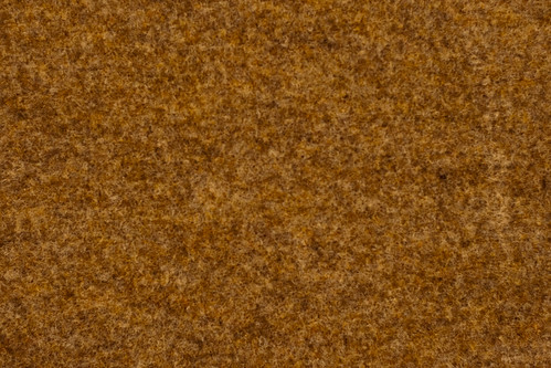 Texture: Rough Rust Colored Carpet