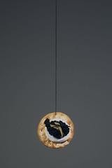 The treachery... (lightwelder   Nick) Tags: cutout magritte minimal utata string cracker treachery magrittesque treacheryofimages utata:project=ip93 notarealcracker thetreacheryofphotographs
