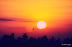 Waiting for a perfect sunrise :) (Sir Mart Outdoorgraphy) Tags: panorama sun sunrise scenery outdoor suria kedah nokin matahari nikonian d90 mentari naturalfilter matahariterbenam nikonuser penangflickr sgdua perfectsunrise sirmart outdoorgraphy kedahflickr mataharinaik mentarimerahdiufuktimur sangsuria