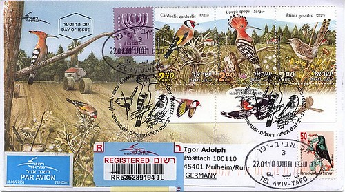 covercity Birds of Israel
