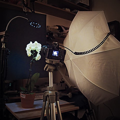 lighting setup_7653