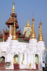 Shwedagon Pagoda (yuyu418) Tags: city sculpture gold golden pagoda ancient asia southeastasia paint image nirvana buddha shwedagon yangon burma stupa buddhist religion colonial culture belief buddhism carving myanmar paya spiritual 95 shining colony budhist bagan shwedagonpagoda rangoon sule budhism enlighten pious botahtaung enlightment sulepagoda theravada burmamyanmar sulepaya botataung yangonrangoon