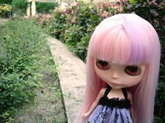 Walking in the Garden