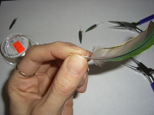 Wire held against feather by jfeathersmith.