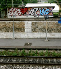 ESIRO (Dubwise Version) Tags: paris graffiti iac vep esiro