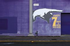 7 Days a Week (Emily Irelan) Tags: seattle urban sign wall graffiti washington mural ballard purble