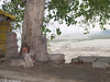 Woodpecker View (amiableguyforyou) Tags: india men up river underwear varanasi bathing dhoti oldmen ganges banaras benaras suriya uttarpradesh ritualbath hindus panche bathingghats ritualbathing langoti dhotar langota